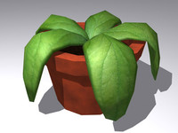 Plant in a pot low poly