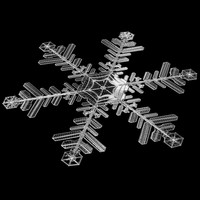 snowflake snow 3d model