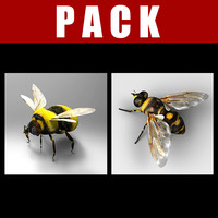3d fly bumblebee model