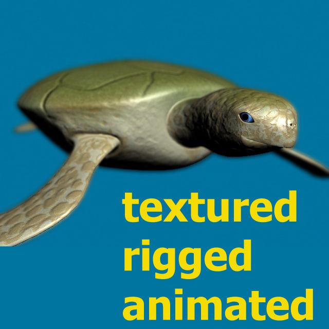 turtle2-thumb.jpg