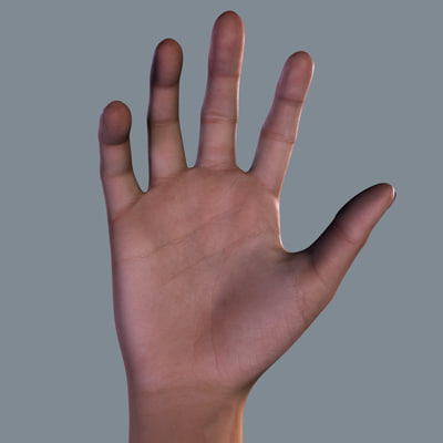 Highly Realistic Hand Model