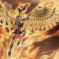 phoenix - evolution max