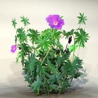 3d pc flower model