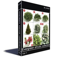 3d evergreen shrubs model