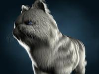cat fat 3d c4d