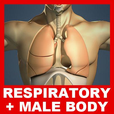 Respiratory_Body_Basic_Small.jpg