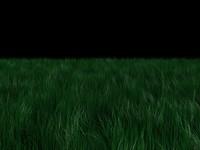 grass.max