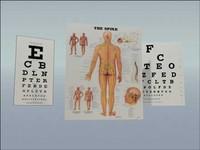 max eye chart