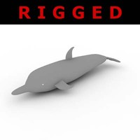 Dolphin - Rigged 3d model
