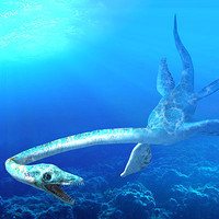 plesiosaur animations 3d model