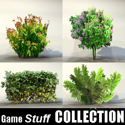 Collection_bush_06.jpg