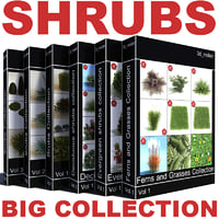 shrubs vol6 collections bush 3d lwo