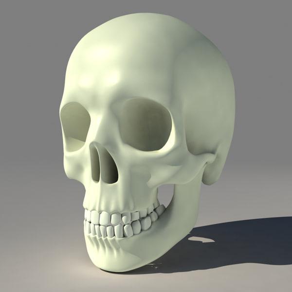 humanskullmaxside4-600x600.jpg