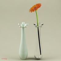 Vase & flower_01