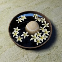 Hawaiian white plumeria flowers in bowl