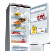 ZANUSSI_Refrigerator.rar
