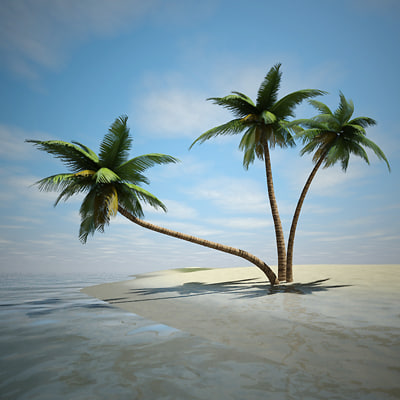 Animated Palm Tree With Coconuts Coconut Tree Animated Tropical