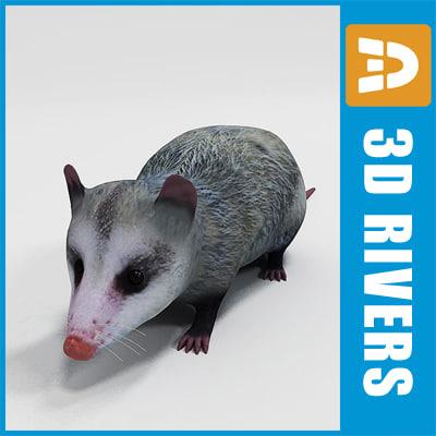 opossum_logo.jpg