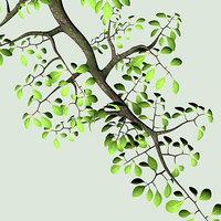 3d model tree branch