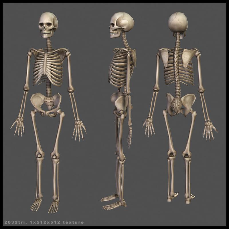 skeletonfinal.jpg
