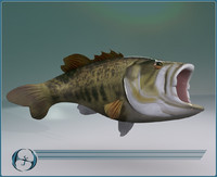 sport big mouth bass 3d model