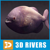 aggressive piranha fish rivers 3d max