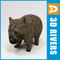 Wombat by 3DRivers