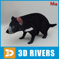3d tasmanian devil animals