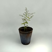 8 potted plants 3d model