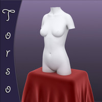 Realistic Female Torso Sculpture 3d model