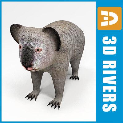 Koala by 3DRivers