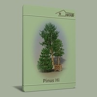 3ds trees pinus