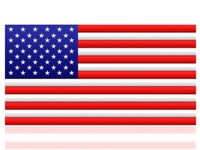 digital usa flag max