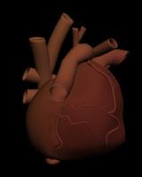 free max mode human heart