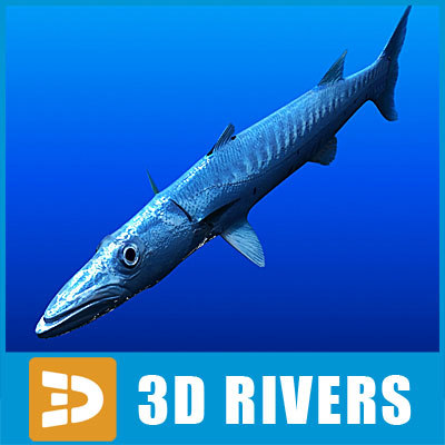 Barracuda by 3DRivers