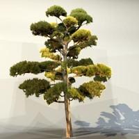 Tree_035.zip