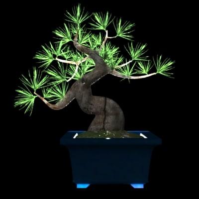 bonsai-p
