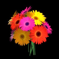 3d gerbera bouquet model