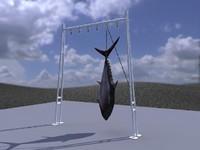 3ds atun fish