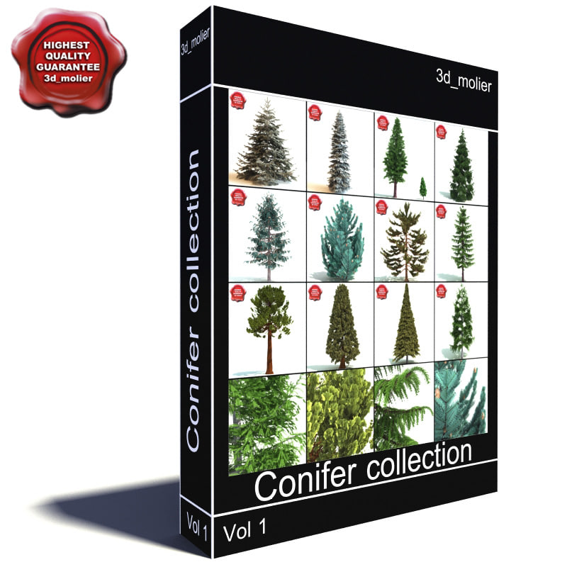 Conifer_collection_main.jpg