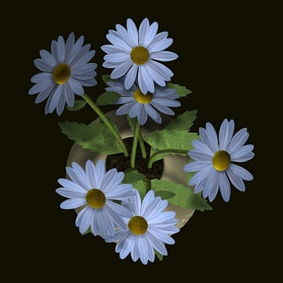 Daisy2_D.jpg