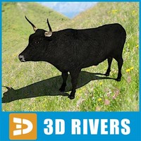 maya aurochs extinct animals