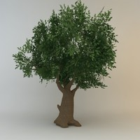 tree 06 low poly
