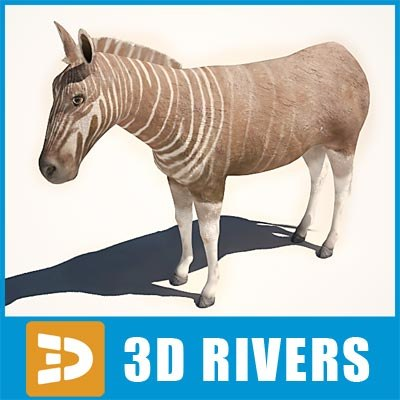 Quagga by 3DRivers