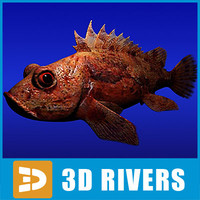 3d scorpionfish fish model
