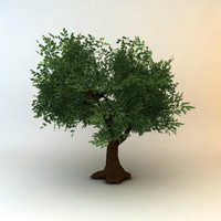 tree 04 low poly