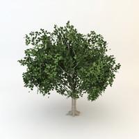 3ds tree 01