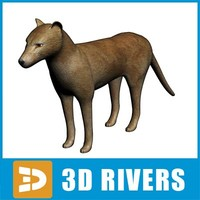 Thylacine by 3DRivers