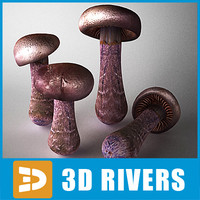 3d cortinarius mushroom model