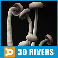 Enoki Mushroom by 3DRivers